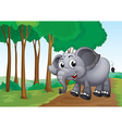 An elephant smiling at the forest vector image vector image