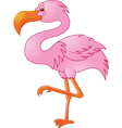 flamingo bird vector image