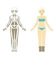 Female body Human Skeleton system vector image