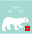 merry christmas text arctic polar bear cub gift vector image