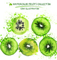 Watercolor kiwi set vector image