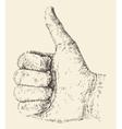 Like Thumb Up Hand Drawn Sketch vector image