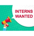 Megaphone with INTERNS WANTED announcement Flat vector image