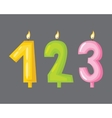 candle birthday numbers with fire vector image