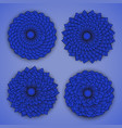 blue chrysanthemums vector image