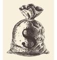 Money Bag Vintage Engraved vector image