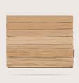 Wooden board cartoon vector image vector image