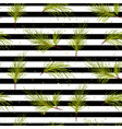 pine tree branches on black striped background vector image