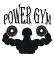 Set of vintage gym emblems labels and design vector image