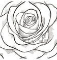 Background with beautiful black and white rose vector image