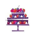 Sweet chocolate cake for birthday holiday vector image