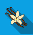vanilla icon in flat style isolated on white vector image