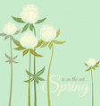 Spring wildflowers vector image