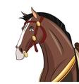 Horse cartoon animal design vector image