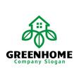 Green Home Design vector image