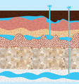 soil layers and extract water vector image