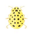 Ladybird in flat style vector image