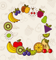 tropical fruit design vector image