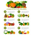 Vegetarian food infographic background vector image