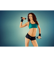 Young sports sexy fitness woman vector image