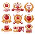 Cricket logo set vector image