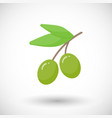 olive branch flat icon vector image