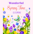 flowers design of spring time greeting card vector image