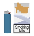 Open cigarettes pack with gas lighter vector image