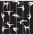 pole dancer silhouette vector image