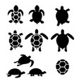set of turtle and tortoise silhouette vector image
