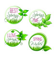isolated leaf grass of spring time quotes vector image