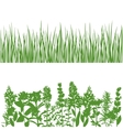 Grass and plants detailed silhouettes on white vector image