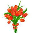 red tulips with ribbon vector image