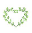 Fresh Green Leaves in Lovely Heart Shape vector image