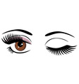 eye brown wink vector image vector image
