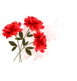 Holiday Background With Three Red Roses vector image