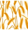 Seamless pattern with wheat Agricultural image vector image vector image