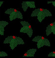 embroidered mistletoe seamless pattern vector image