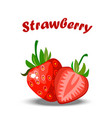 realistic strawberry whole and a slice vector image