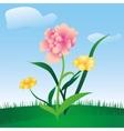 spring floral meadow vector image