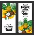 Banners with tropical fruits and leaves Design vector image