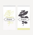 hand drawn oregano in outline and silhouette style vector image