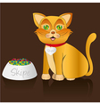 yellow cat sitting with food container and necklac vector image