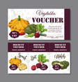 coupon template with vegetables set of vector image