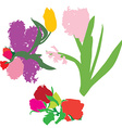 spring flowers silhouettes vector image