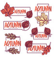 Autumn frames stickers emblems fall leaves vector image