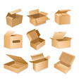 carton packaging box vector image