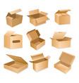 carton packaging box vector image