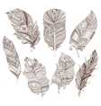 set of doodle feathers on white background vector image