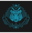 Tiger head in frame vector image
